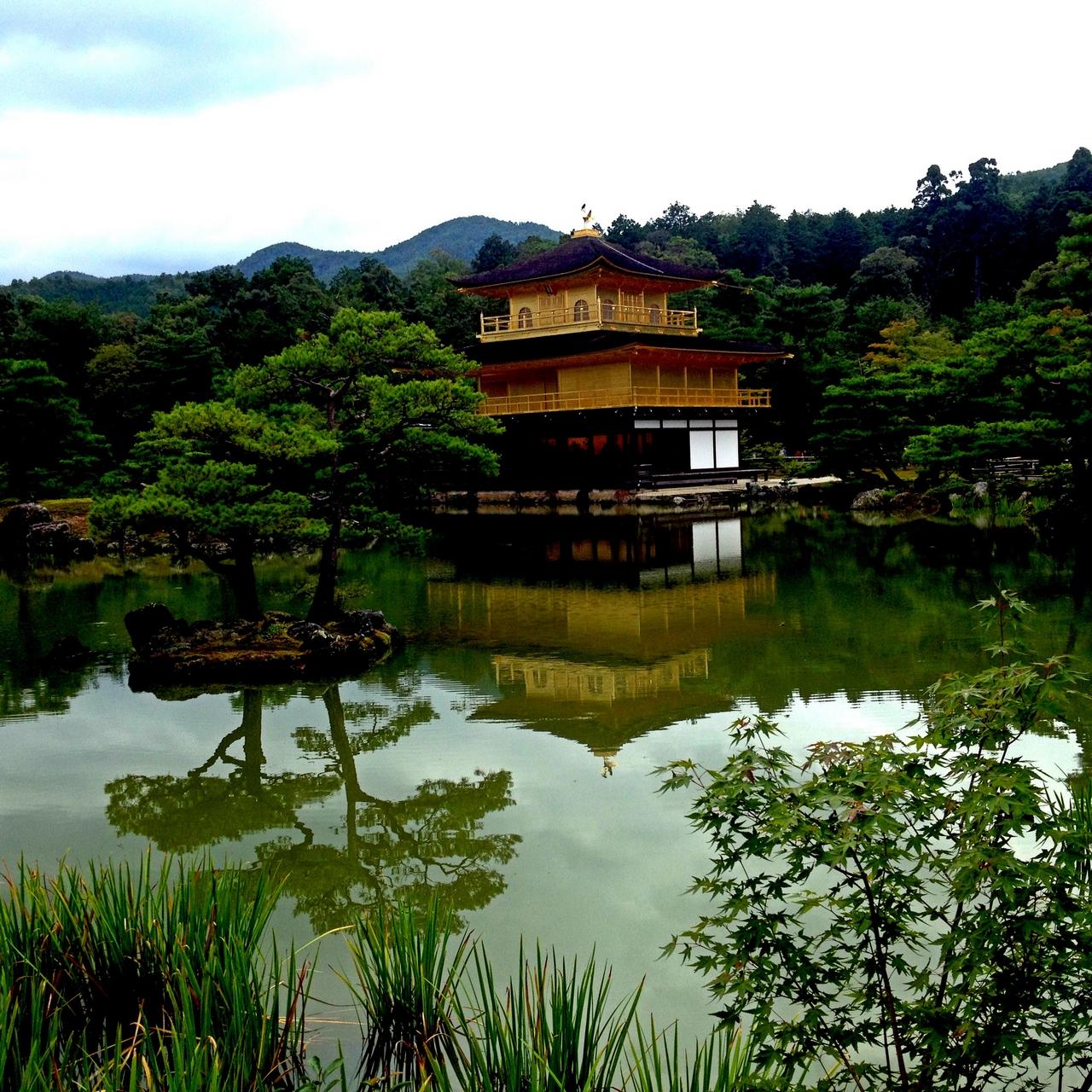 En tu viaje a Japón en dos semanas tienes que visitar el Templo Dorado o Kinkaku.