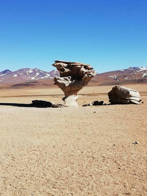 Cuándo ir al Salar de Uyuni: Árbol de Piedra.