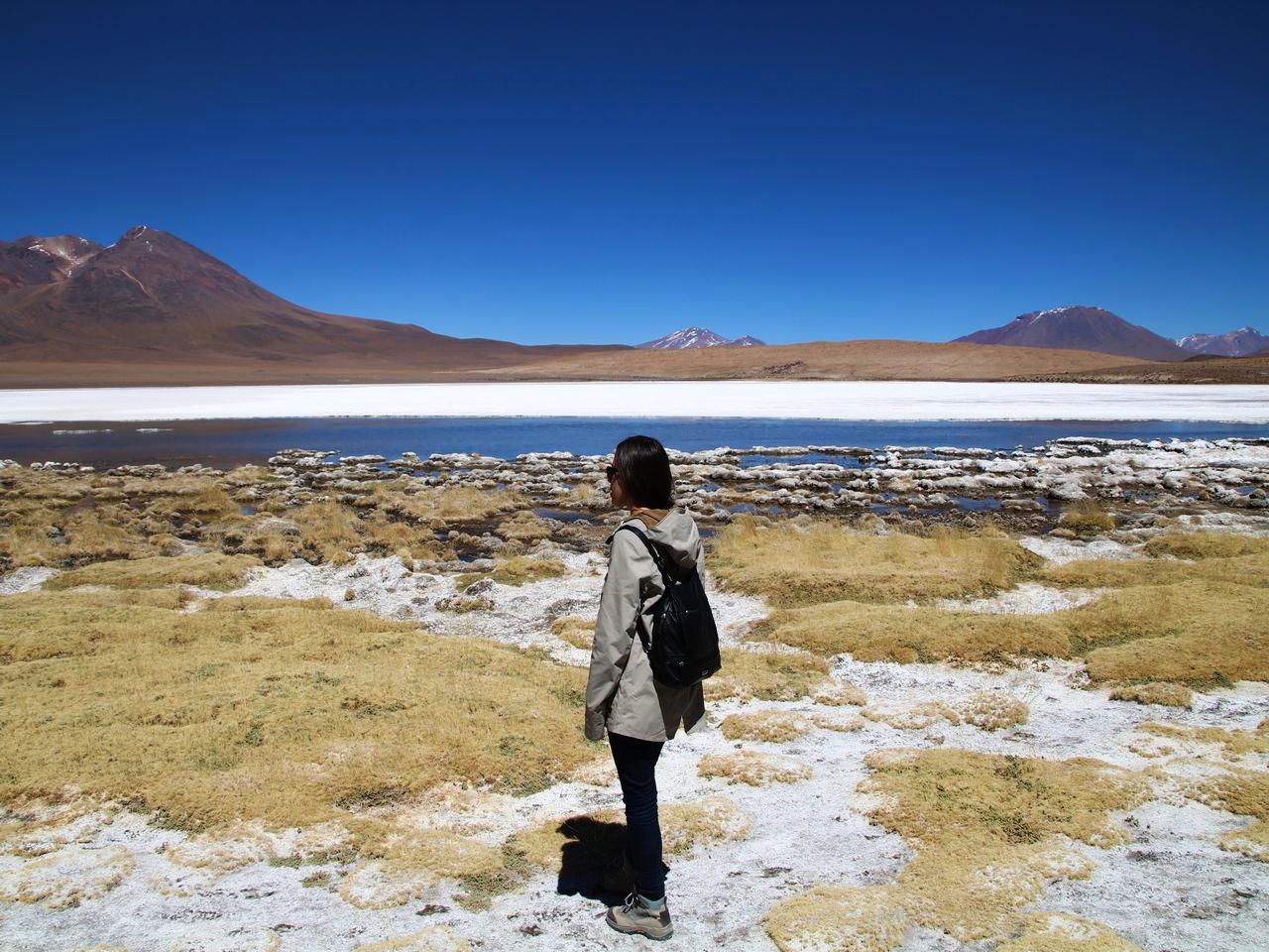 En el tour de 3 días por el Salar de Uyuni verás la preciosa Laguna Cañapa.