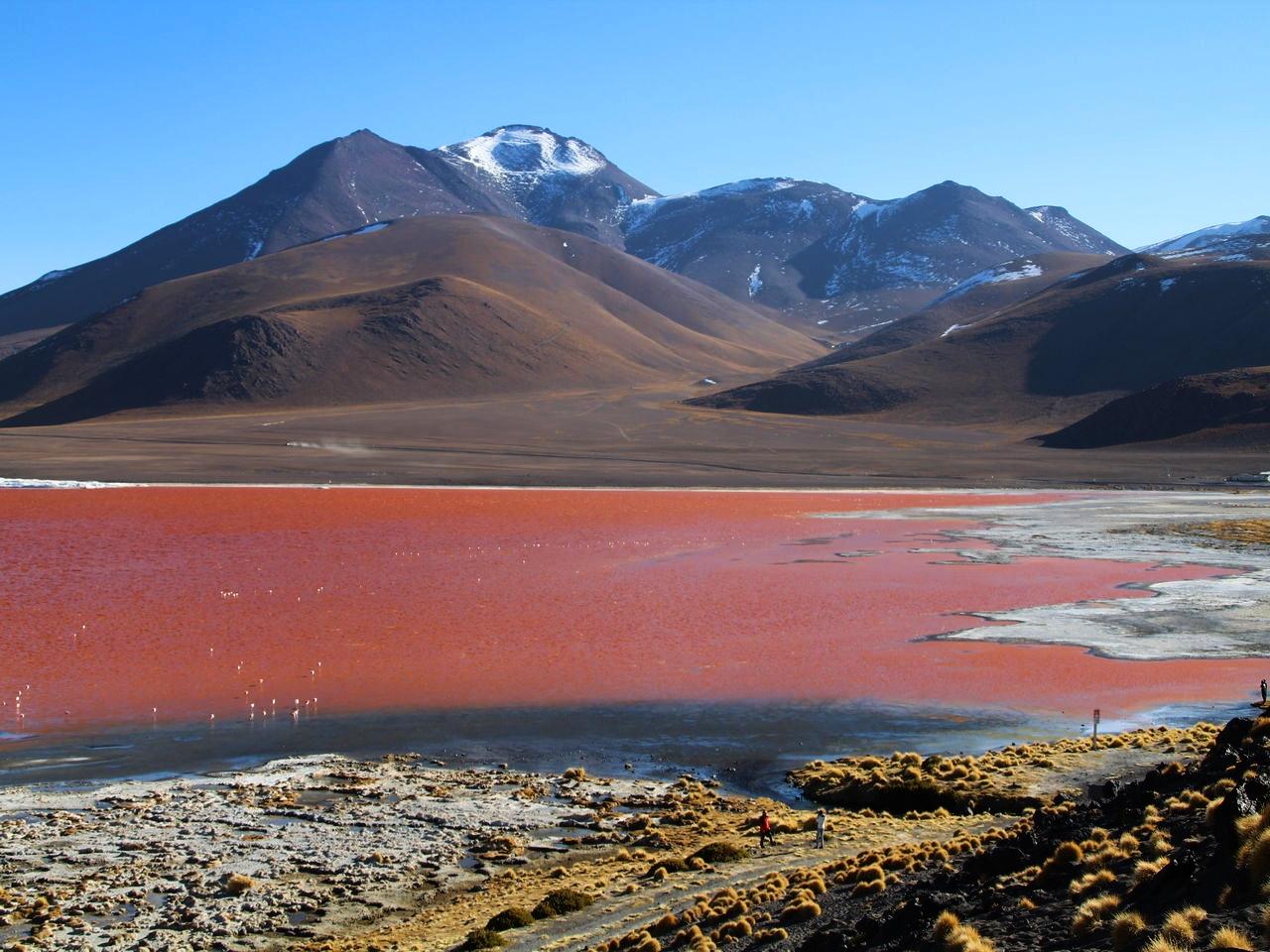 Ver el color rojizo de la Laguna Colorada no tiene precio.