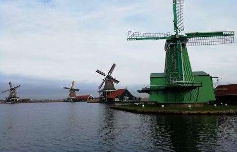 Visitar Zaanse Schans desde Ámsterdam y enamorarte de sus molinos