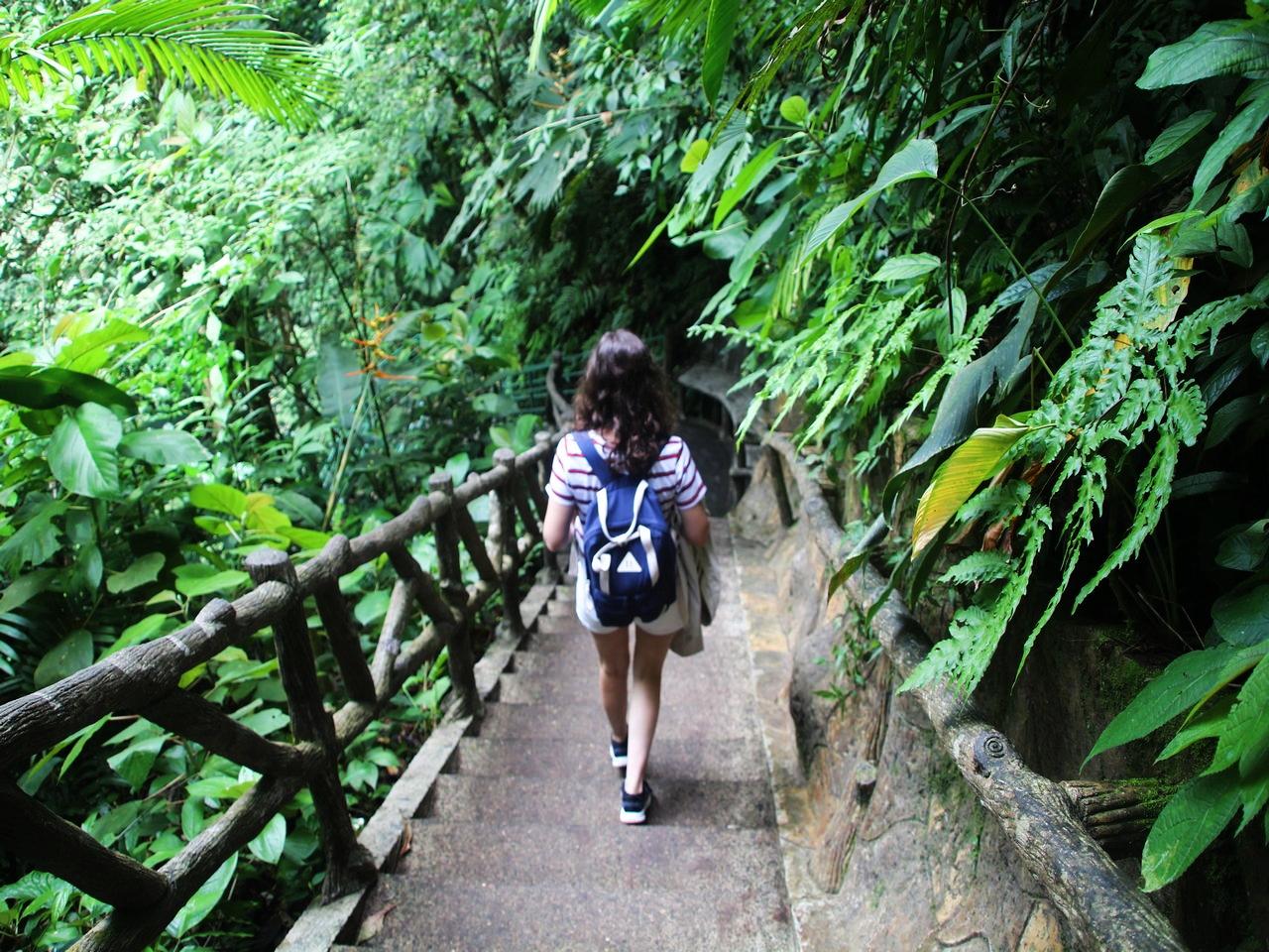 Bajando a la Catarata La Fortuna antes de que comenzase a diluviar.