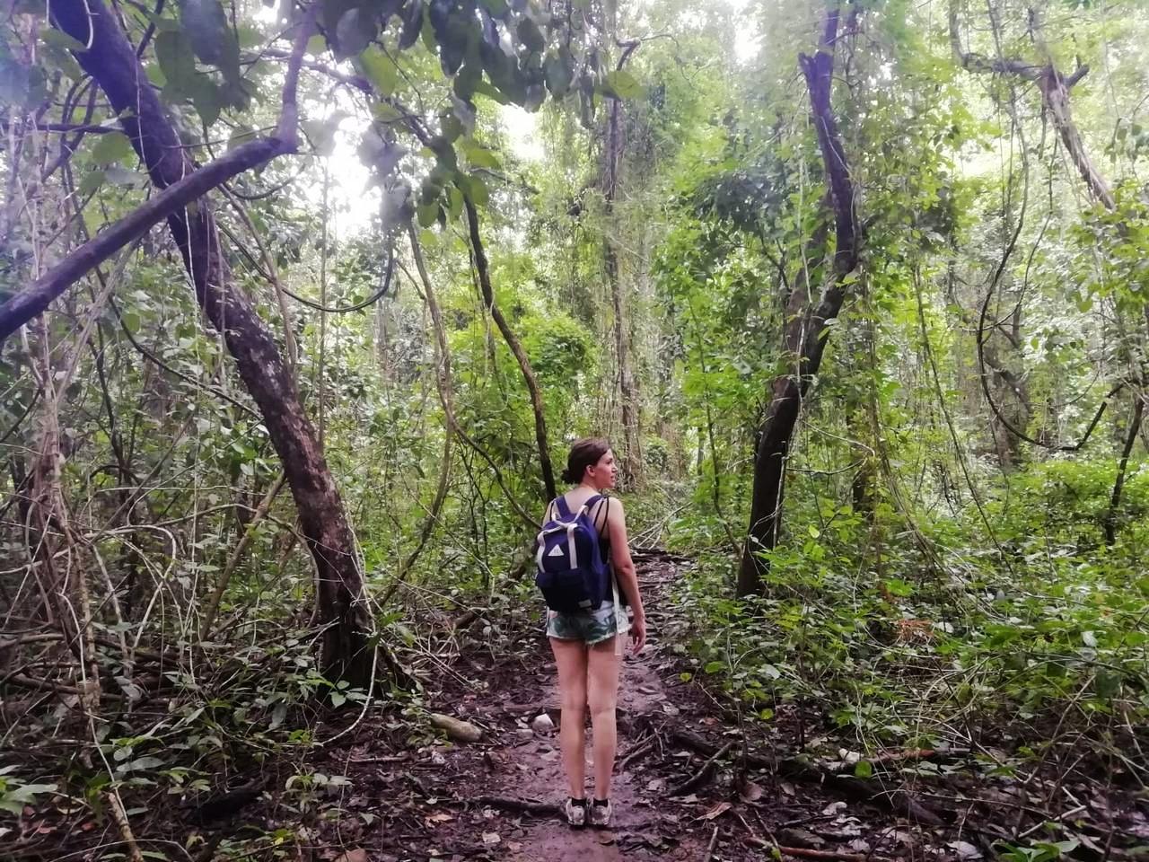El sendero sueco de la Reserva Absoluta Cabo Blanco es de dificultad alta.
