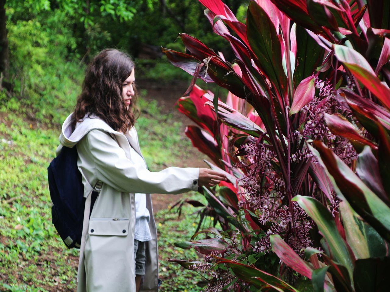 Paseo por el bosque en Monteverde, Costa Rica.