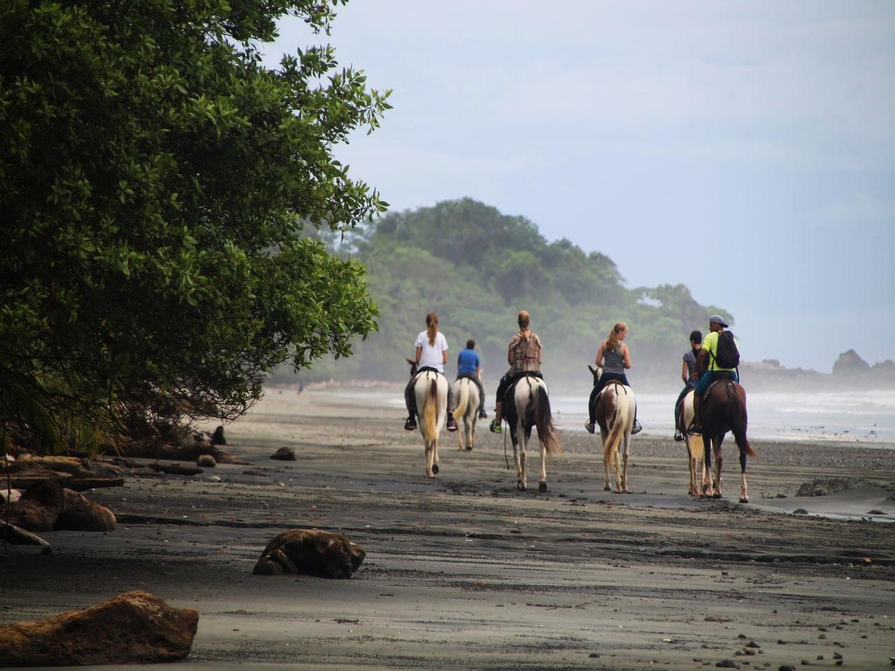 Paseos a caballo en Montezuma, un imprescindible.