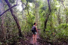 Qué ver en Montezuma: 15 imprescindibles