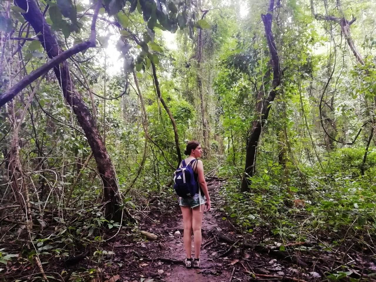 Qué ver en Montezuma: Reserva Natural Absoluta Cabo Blanco.