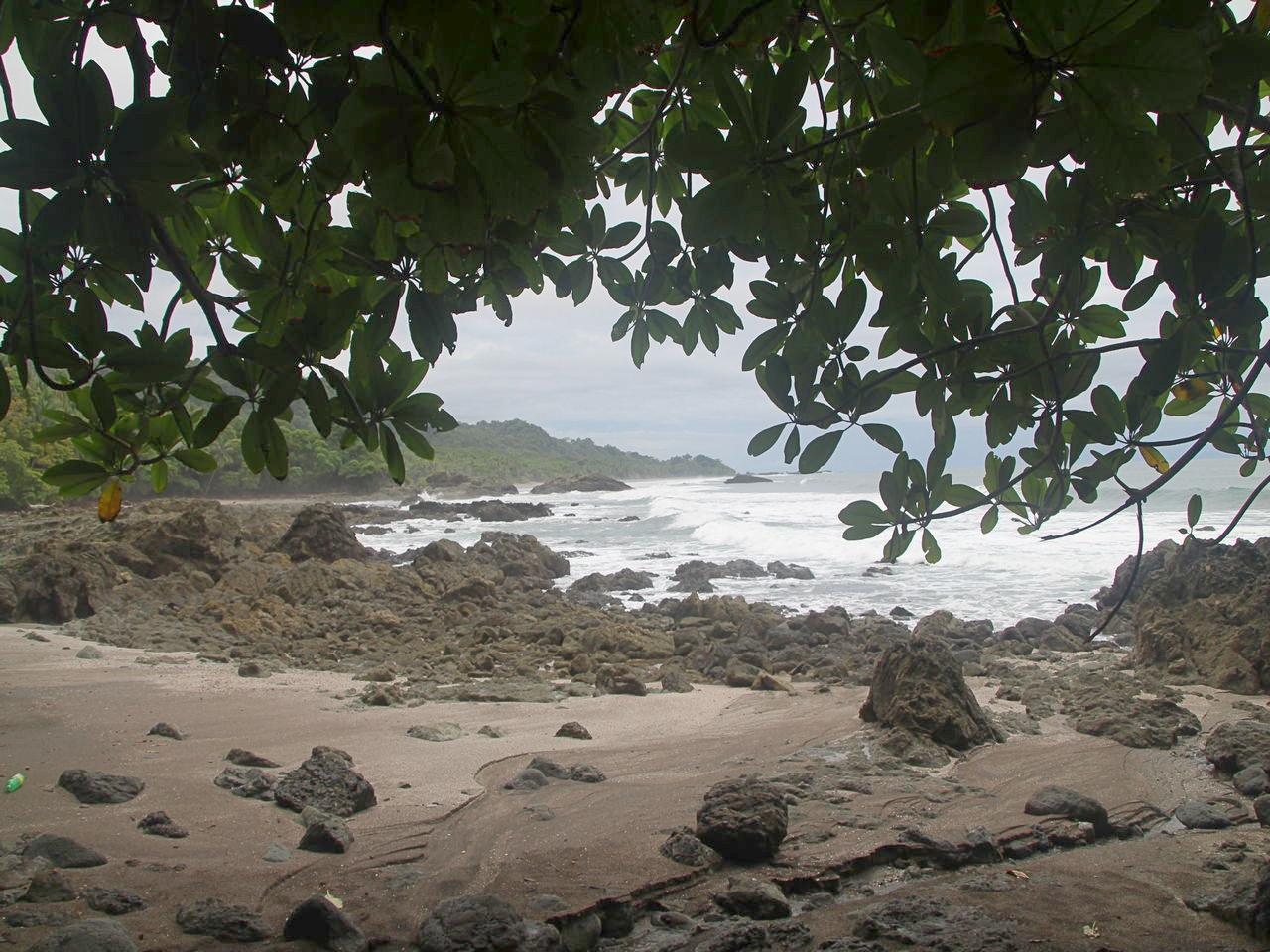 Desde Playa Montezuma a Playa Grande tienes vistas fabulosas como ésta.