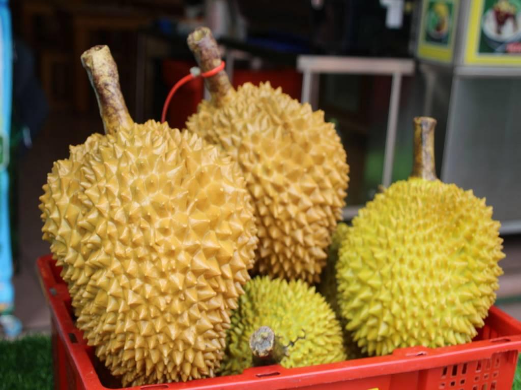 Este es el famoso durian, la supuesta fruta más apestosa del mundo.