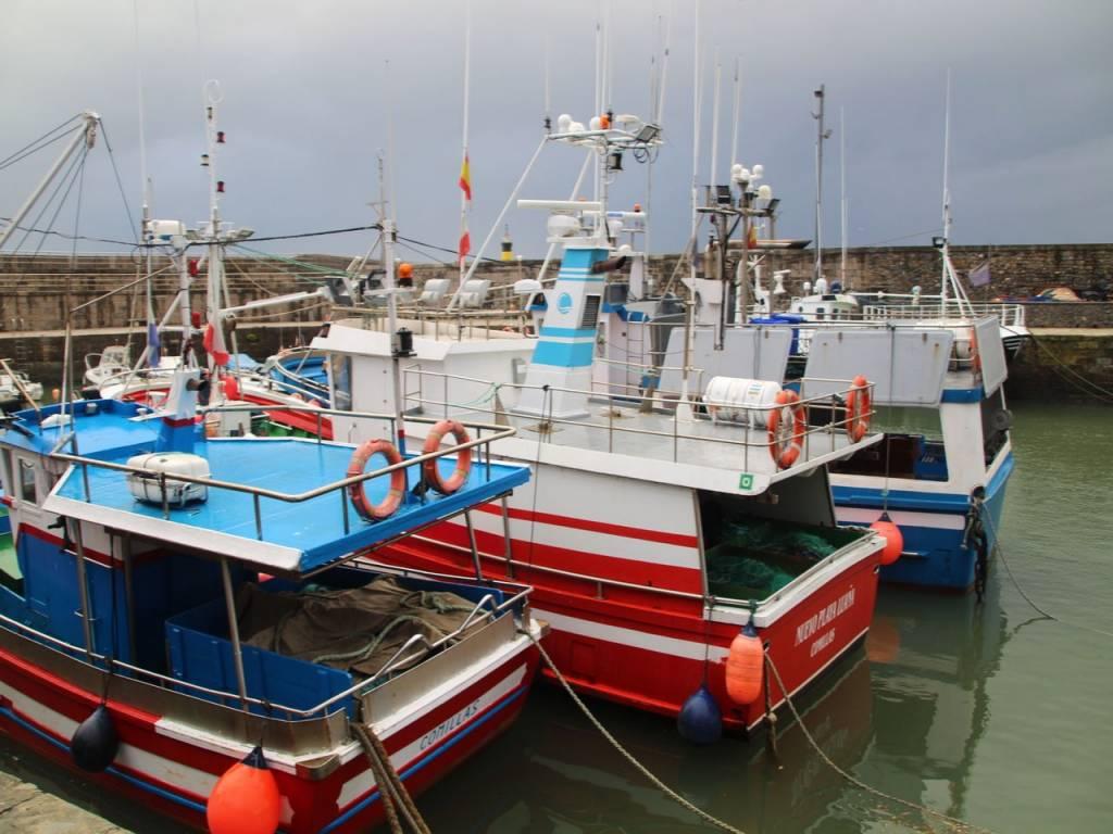 Barcos de pesca amarrados en el puerto.