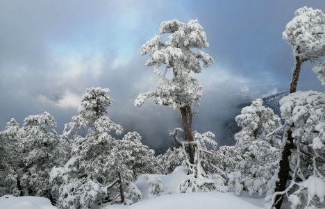 Excursión con raquetas de nieve en Madrid