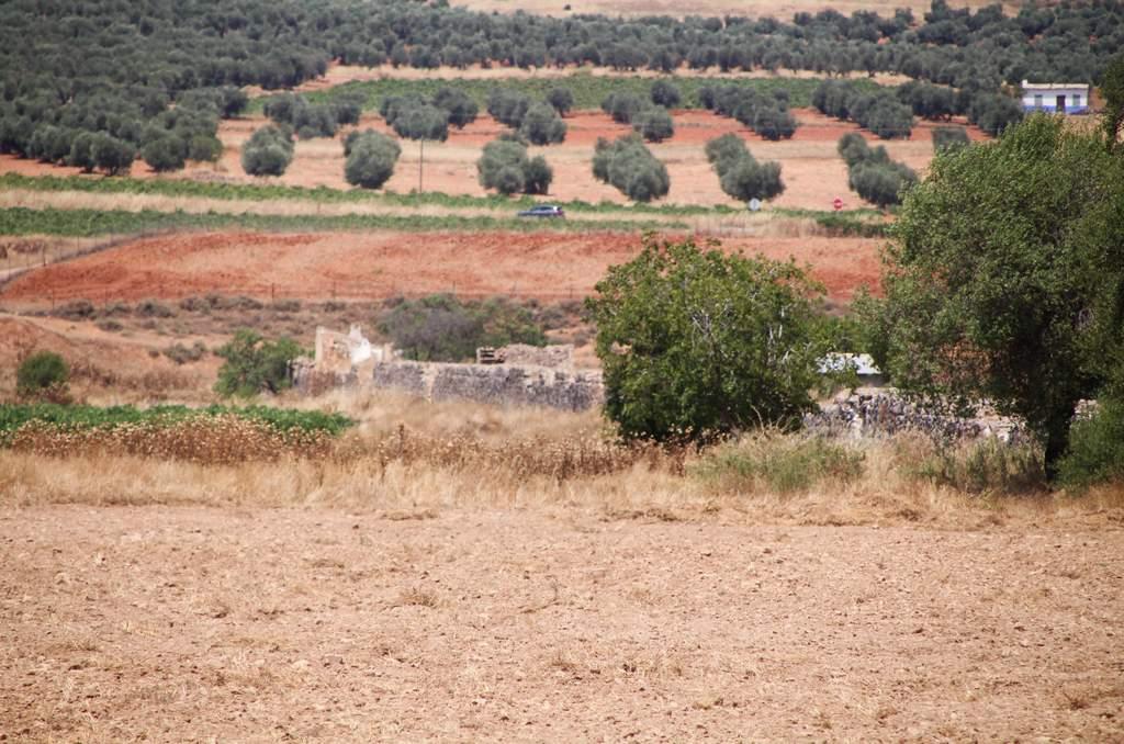 Inicio de la presa romana desde la carretera que da acceso a esta obra de ingeniería.