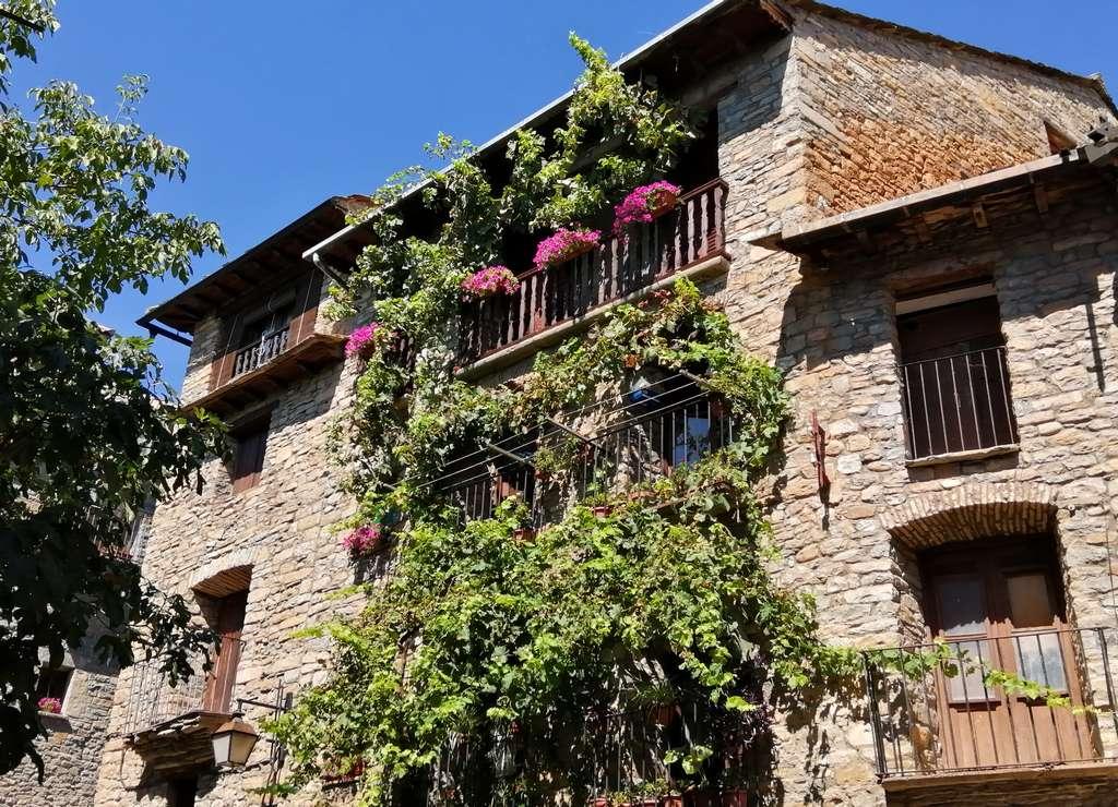 Ya te dije que en Aínsa hay muchas fachadas adornadas con plantas y flores.