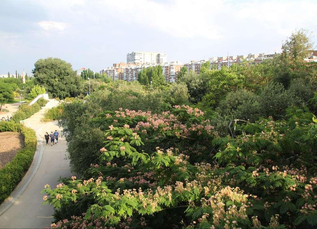 El Parque Madrid Río es uno de los pulmones verdes de la ciudad.