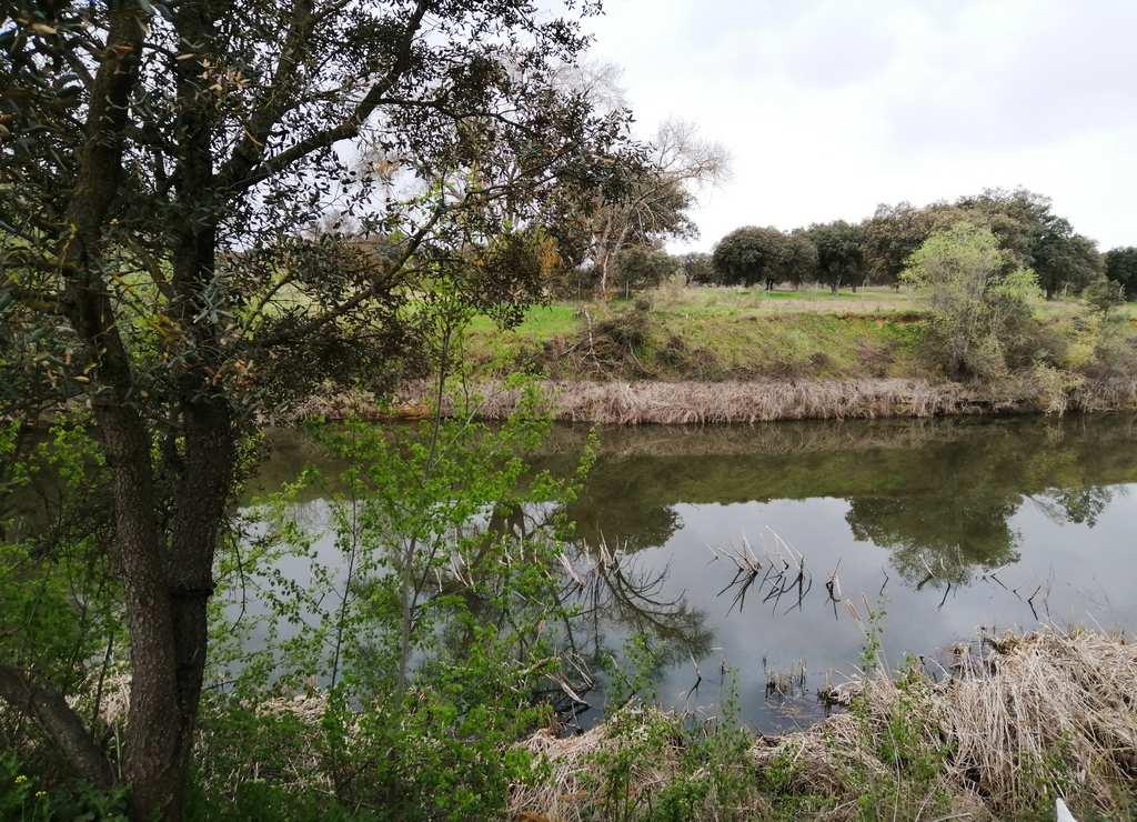 La ruta por El Pardo que voy a contarte se llama Senda Fluvial del Manzanares e incluye la visita al Palacio Real de El Pardo.