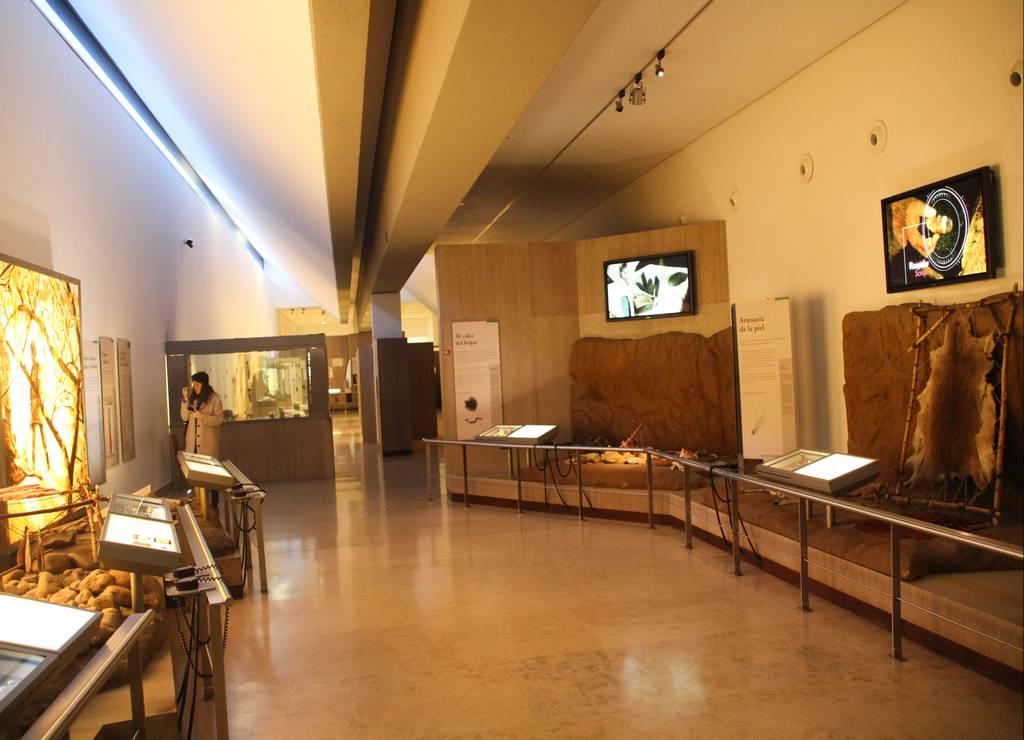 En el Museo de Altamira puedes conocer muchos datos históricos y curiosidades sobre esta caverna cántabra.