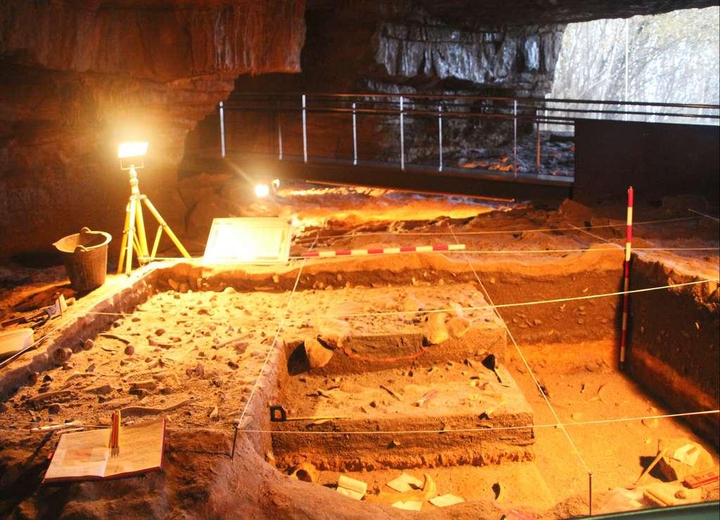 Excavación arqueológica en la Neocueva de Altamira.