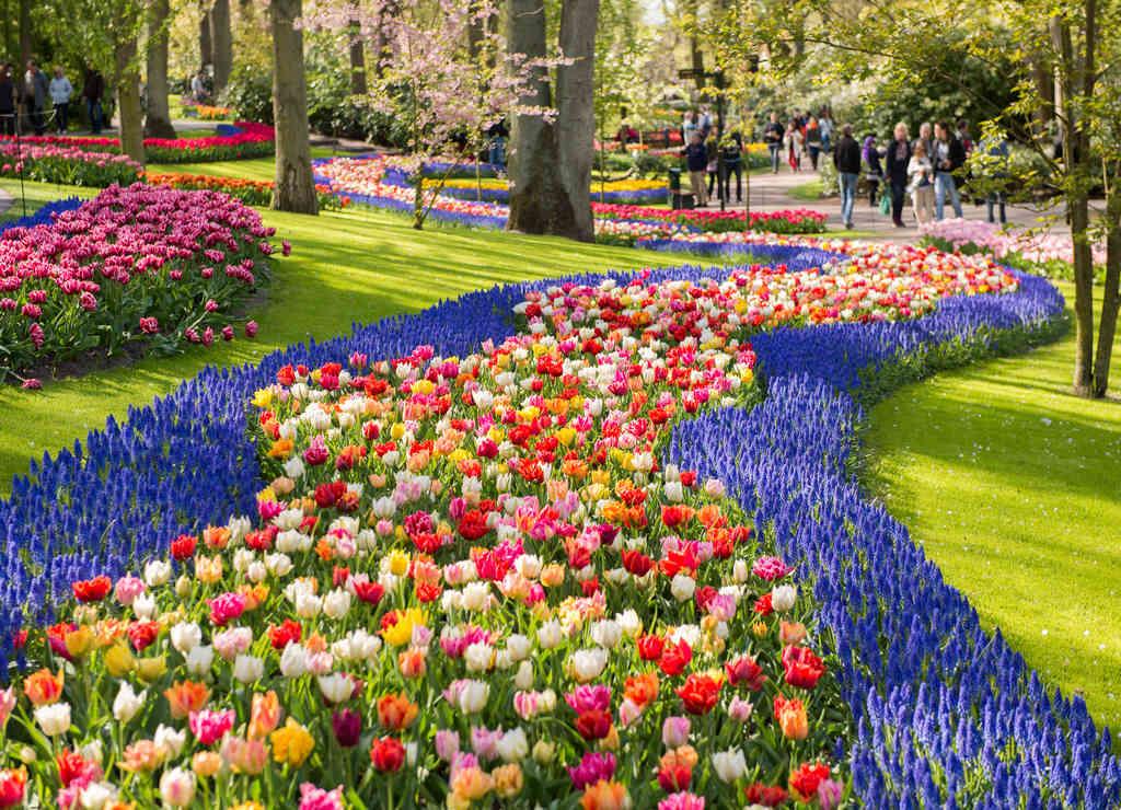 Qué ver en los alrededores de Ámsterdam: jardines de Keukenhof.