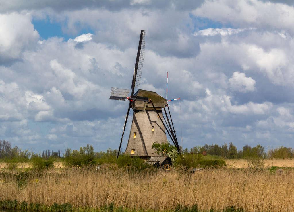 En Kinderdijk puedes ver la típica imagen de postal de los molinos de viento neerlandeses.